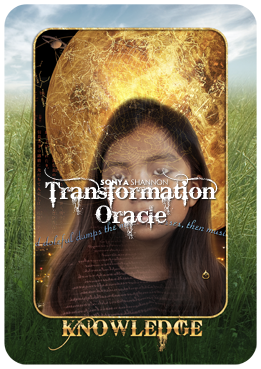 Knowledge card in Sonya Shannon's Transformation Oracle