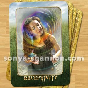 Receptivity Card in Transformation Oracle
